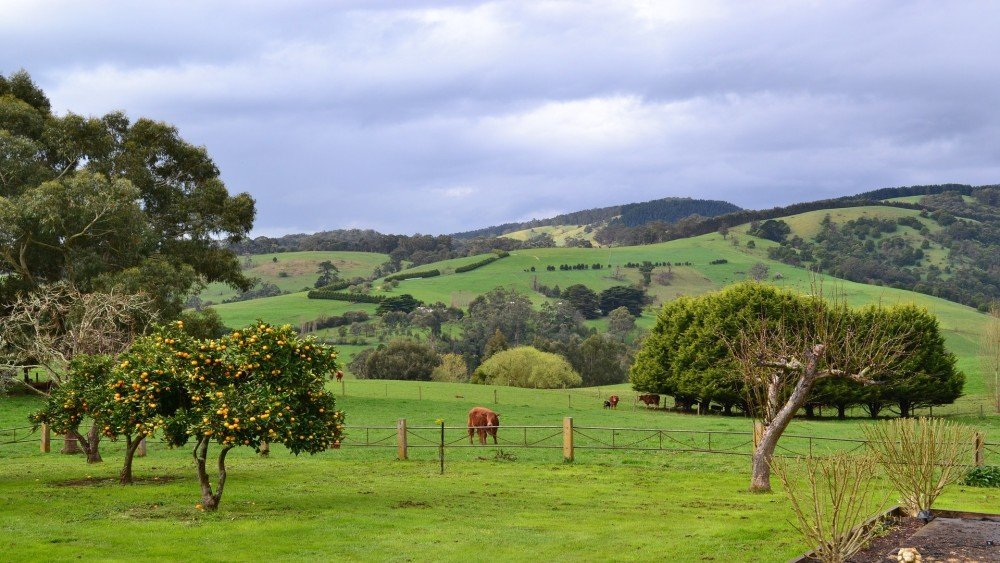 THE 30 BEST Farm Holiday Stays in Australia (2020)