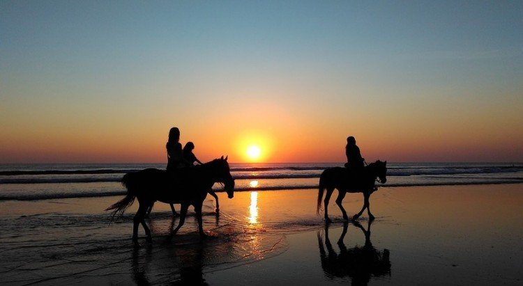 Horse riding along the sea shore