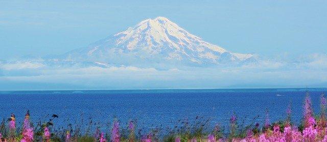 Mt.Cook-FARMSTAYS USA, ANCHORAGE, ALASKA