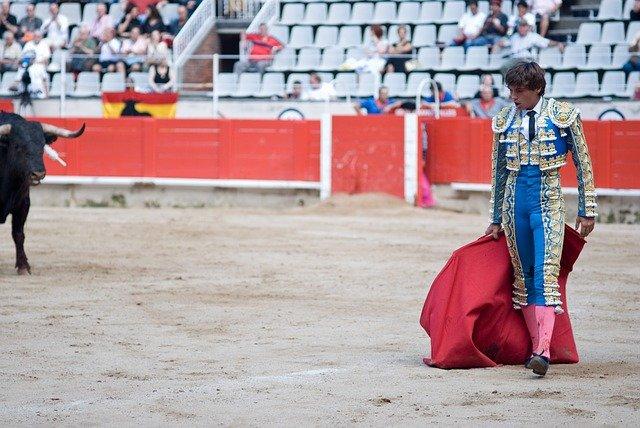 Bull and matador in bullfight Spain