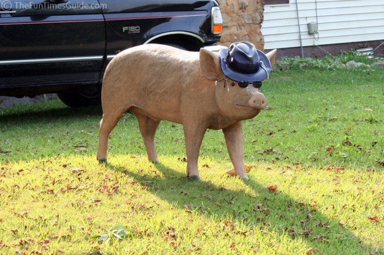 farm pig wearing a hat and sunglasses