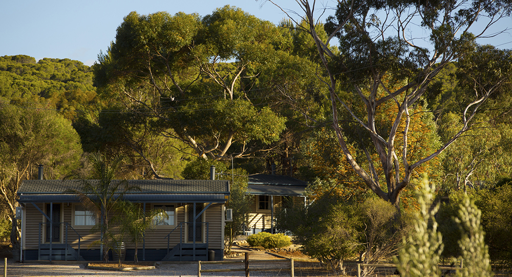 farmstay-in-barossa-valley-south-australia