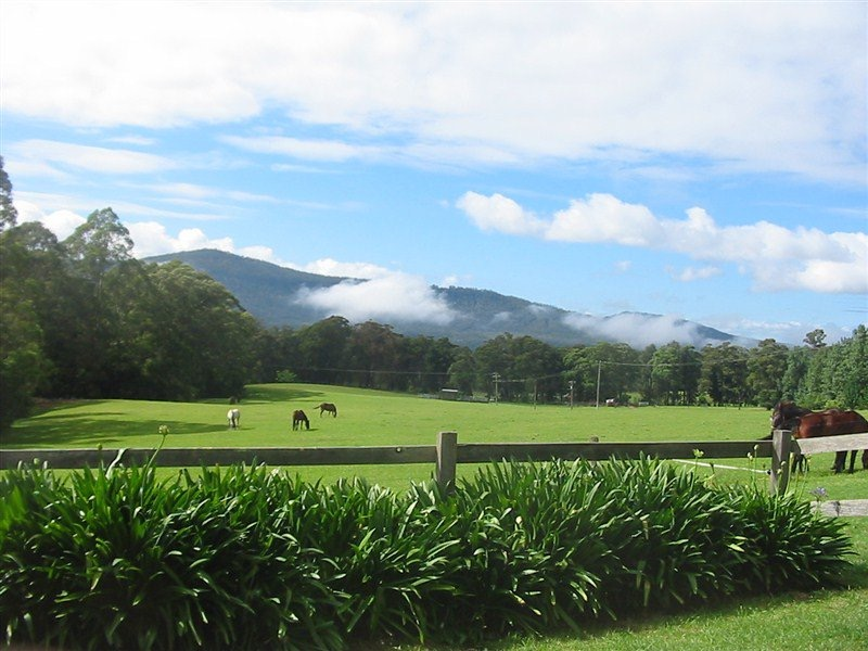 farmstay-horse-riding-kangaroo-valley-nsw
