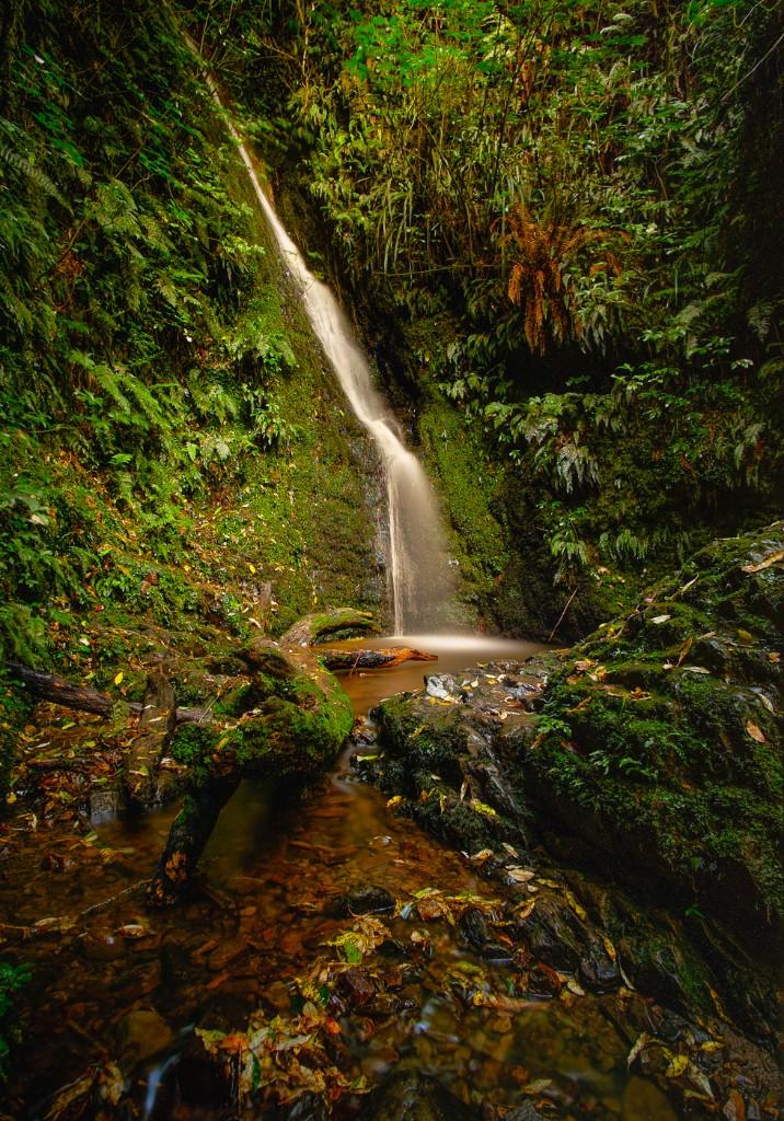 20150326-Acland-Falls-8849-Edit