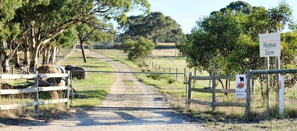 Wenton_Farm_Holiday-08