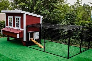 Large chicken coop with run.